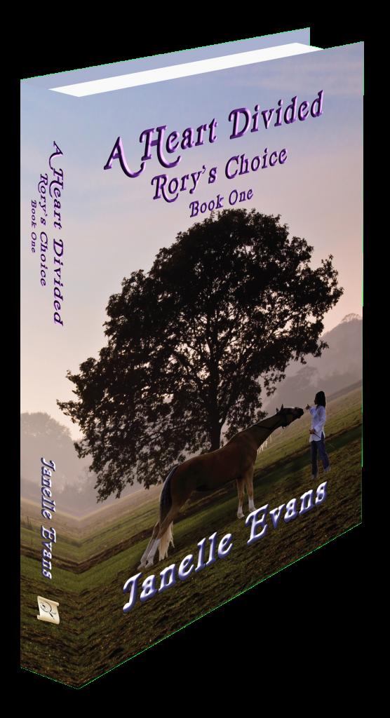 <B><i>A Heart Divide</i></b>Rory's Choice
